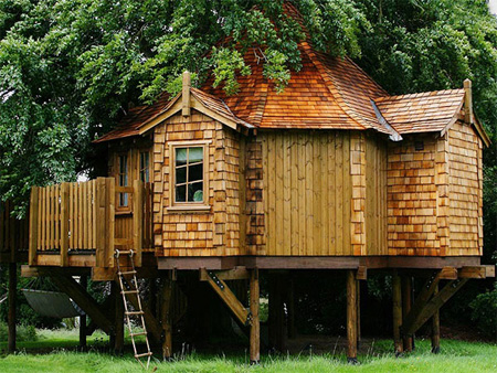 Houses on Beautiful Amazon Tree Houses 8
