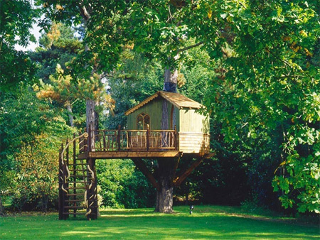 Beautiful Amazon Tree Houses 9