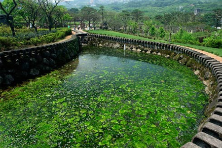 Zipper Pond by Ju Chun