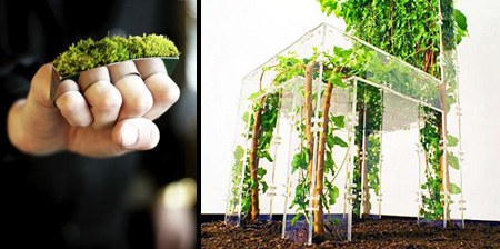 Creative Designs Inspired by Nature
