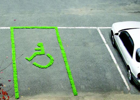 Grass Parking Space