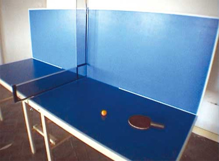 Extreme Ping Pong Table Designs 3