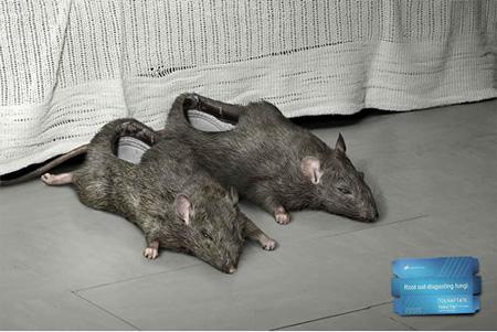 Rat Slippers