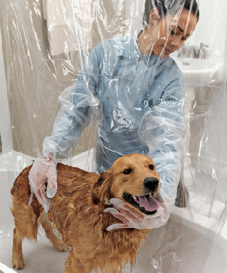 Pet Shower Curtain