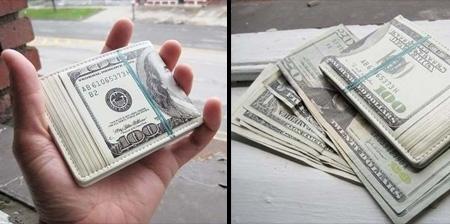One Hundred Dollar Bill Wallet