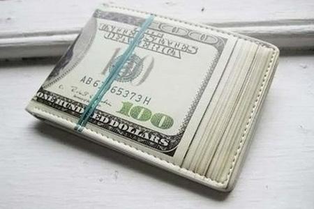 Hundred Dollar Bill Wallet