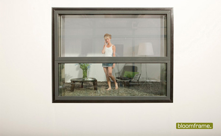 Bloomframe Window