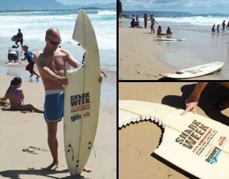 Clever Surfboards Promote Shark Week