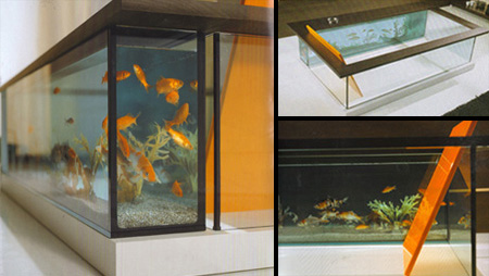 Aquarium Bathtub