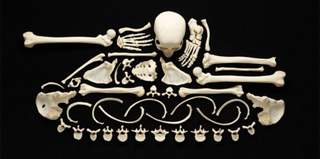 Human Bones Used to Make Art