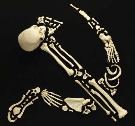 Human Bone Sculpture