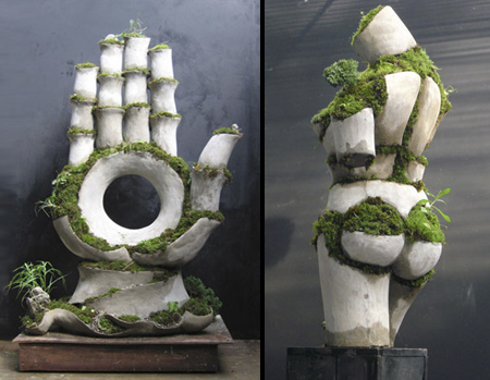 Growing Sculptures by Robert Cannon