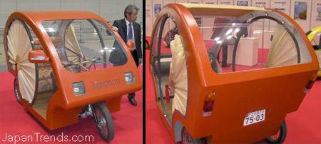 Bamboo Electric Car