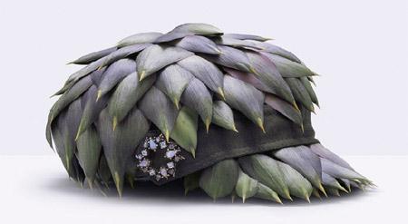 Edible Hat