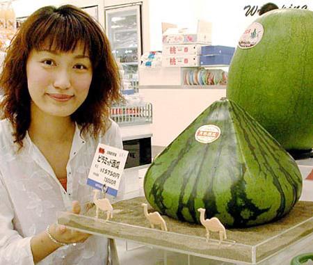 Pyramid Watermelon
