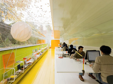 Modern Office in a Forest