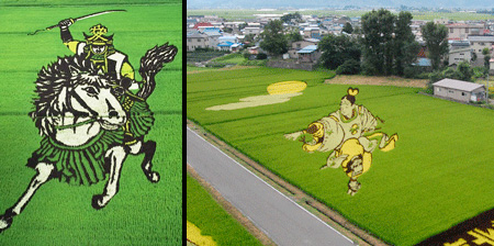 Rice Field Art in Japan