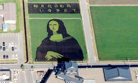 Art on Rice Fields in Japan