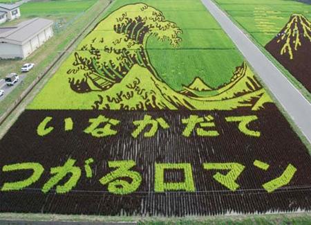 Japanese Rice Art