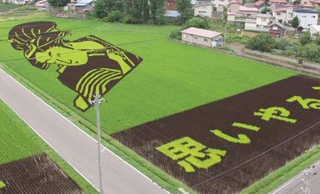 Japanese Fields Art