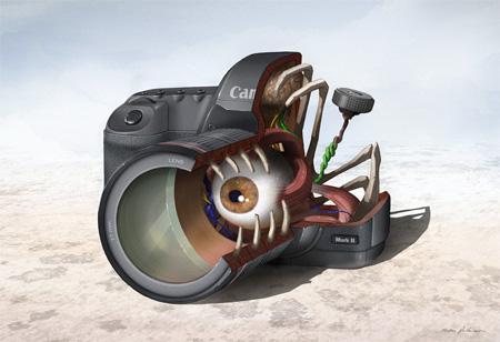 Canon 5D Mark II Anatomy