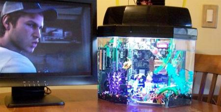 Aquarium Computer