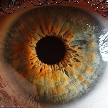 Macro Eyeball