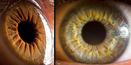 Amazing Photos of Human Eyes