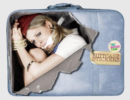 Air Stewardess Sticker
