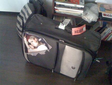 Air Stewardess Suitcase Sticker
