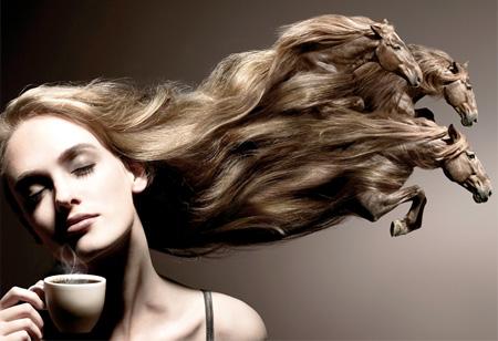 Hair Horses