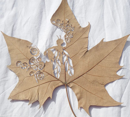 Beautiful Leaf Carving