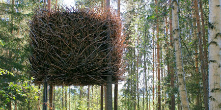 Birds Nest Tree House