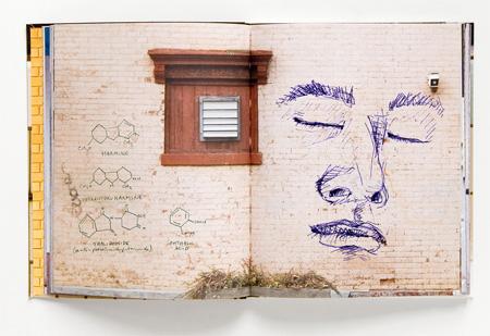 New York Walls Sketchbook