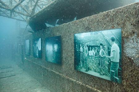 Underwater Art Show