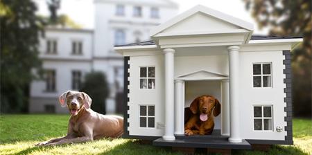 Dog Mansions