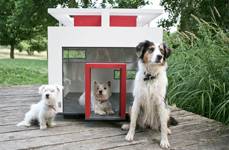 Modern Doghouse