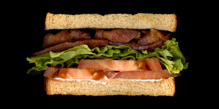 Scanned Sandwiches