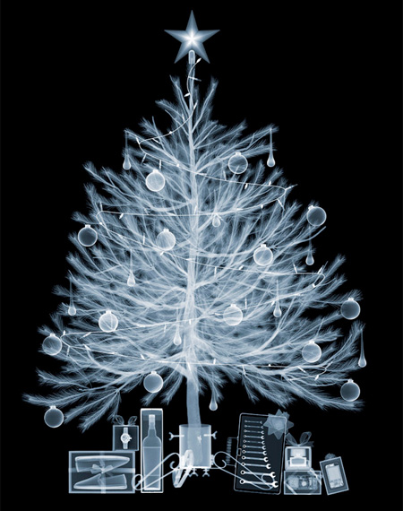 X-Ray Christmas Tree