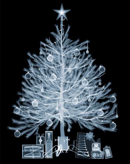 X-Ray Christmas Tree