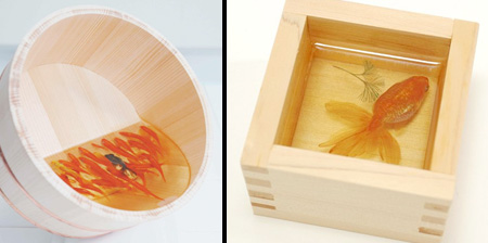 Amazing 3D Fish Paintings