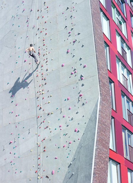 Climbing Wall Apartment