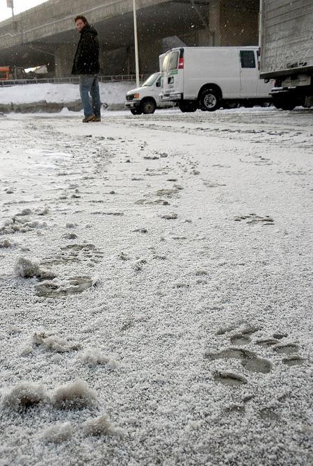Animal Footprints