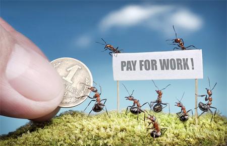 Ants Work