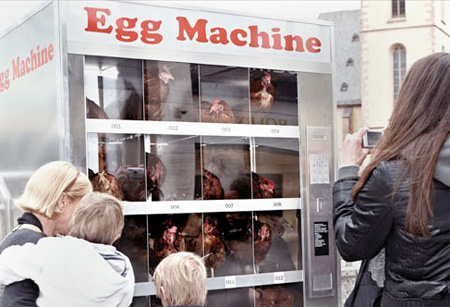 Chicken Machine