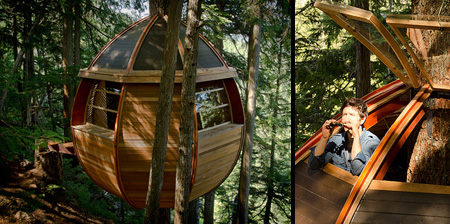 Egg Shaped Tree House