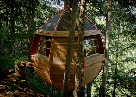 Round Tree House