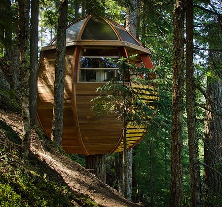 Egg Tree House