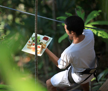 Flying fox di Restoran Unik Sarang Burung