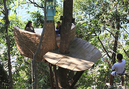 Tree Top Dining